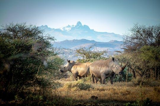 Tour de 5 días por el Monte Kenia y el Masai Mara Safari