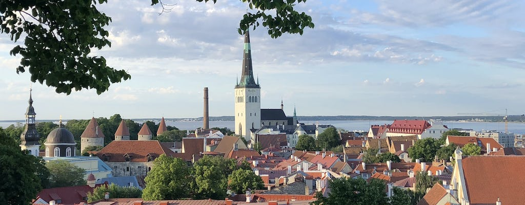 Privater Rundgang durch Old Tallinn
