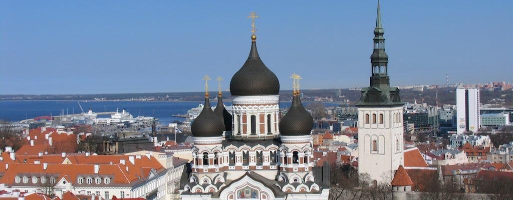 Excursão privada a Tallinn e a zona rural da Estônia