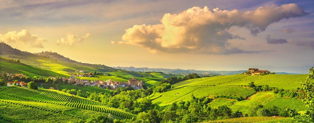 Tour privado del vino Barolo y degustación desde Torino