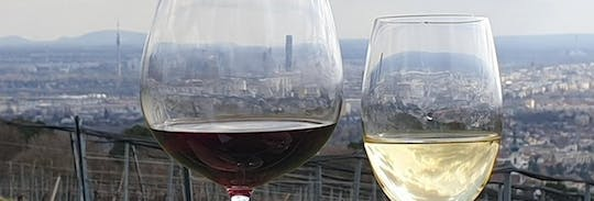 Historical wine tasting and walking tour in Vienna