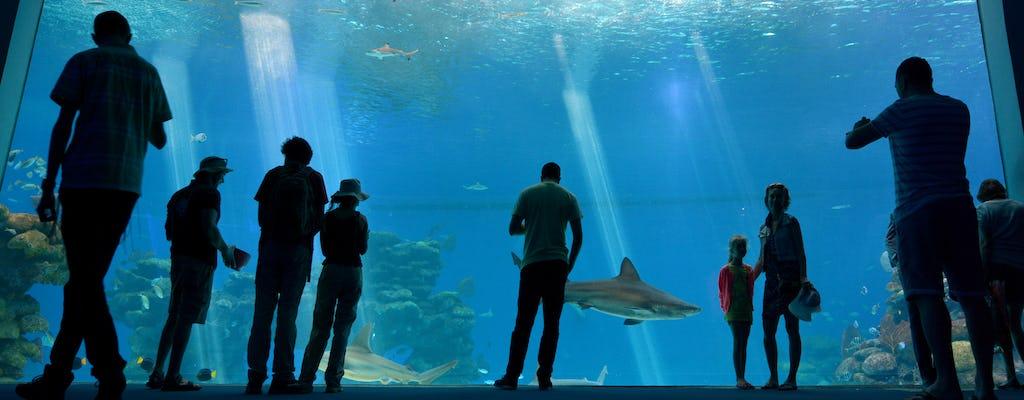 Underwater observatory tickets