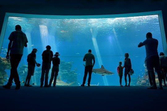 Bilhetes para o observatório subaquático