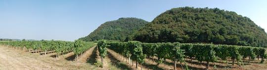 Franciacorta-wijntour en proeverij uit Brescia
