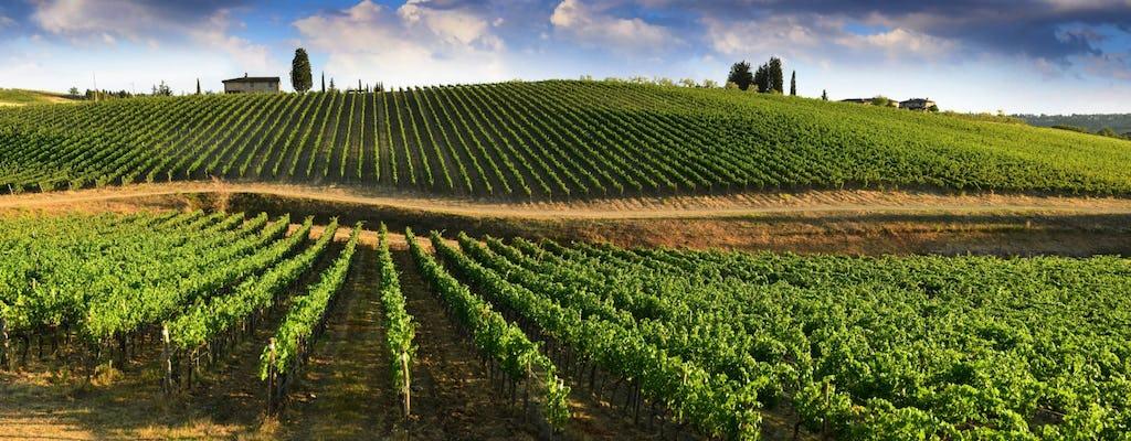 Prywatna wycieczka po winach Chianti i degustacja z Bolonii