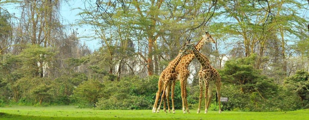 Von Nairobi: Rift Valley 4-tägige Safari