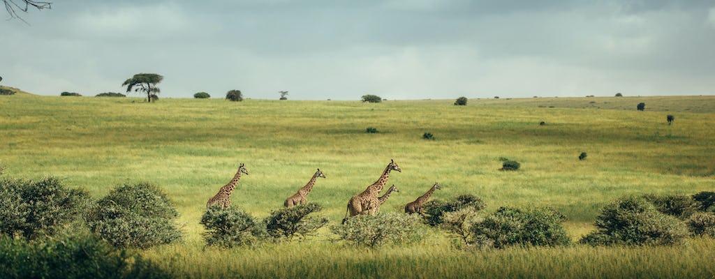 Nairobi National Park dagtour