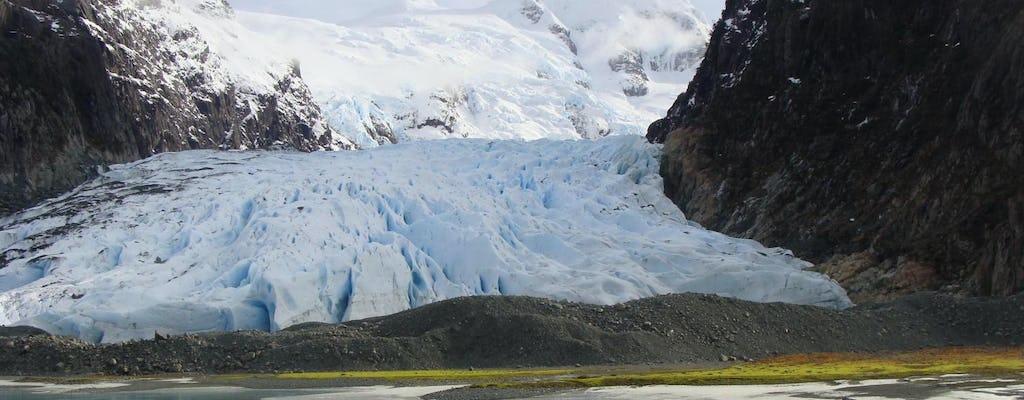 Gletsjers Balmaceda en Serrano varen met een traditionele Patagonische lunch