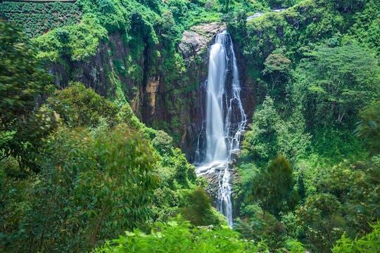 La rotta del tè Nuwara Eliya, Ella e Little Adam's Peak fanno un'escursione di 2 giorni da Kandy
