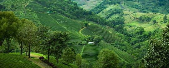 Wycieczka górska Knuckles do wioski Heeloya z Kandy