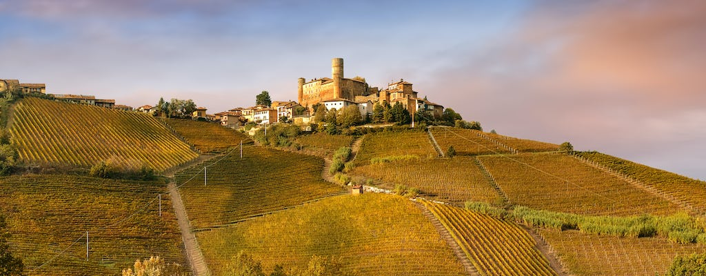 Barolo wine tour and tasting from Milan