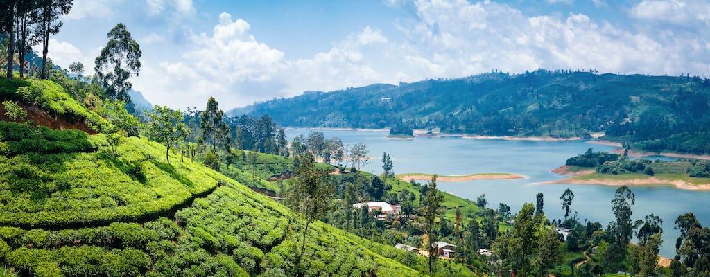 Knuckles Mountain: escursione alla Maningala Rock e al villaggio di Atanwala da Kandy