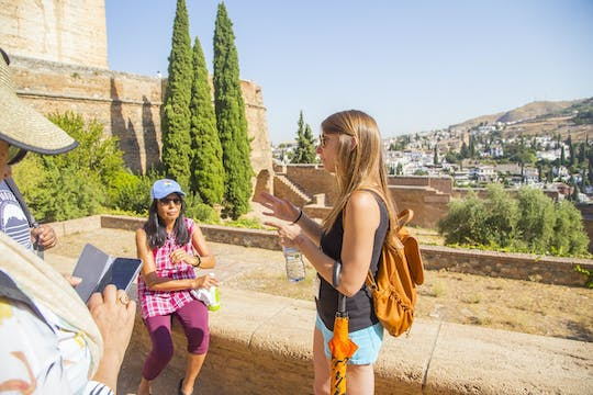 Guided tour of the Alhambra with Nasrid Palaces