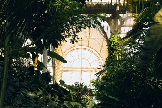 Tour podcast immersivo di Kew Gardens