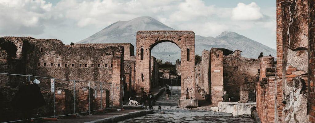 Tour virtuale di Pompei, la città congelata nel tempo