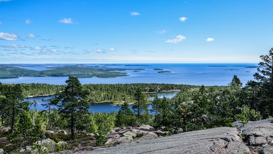 Sunset hike and wildlife spotting in Sweden's national park