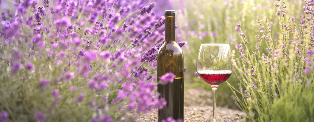 Bandol and Cassis full-day private wine tour