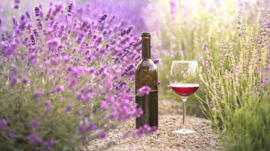 Tour privado de vinho de dia inteiro em Bandol e Cassis