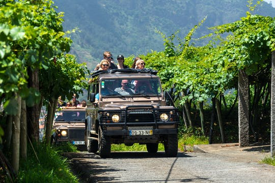Nature and Wine Experience