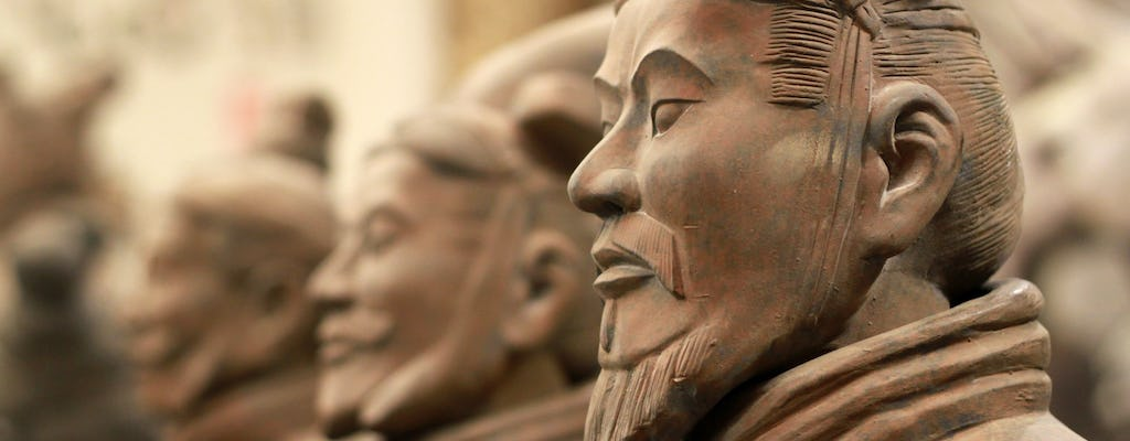 Full-day tour in Xi'an with Terra-Cotta Warriors, Big Wild Goose Pagoda, and City Wall
