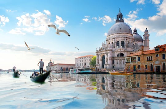 Private walking tour of Venice from Milan