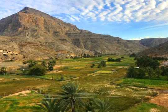 Half-day mountain safari to Jebel Harim