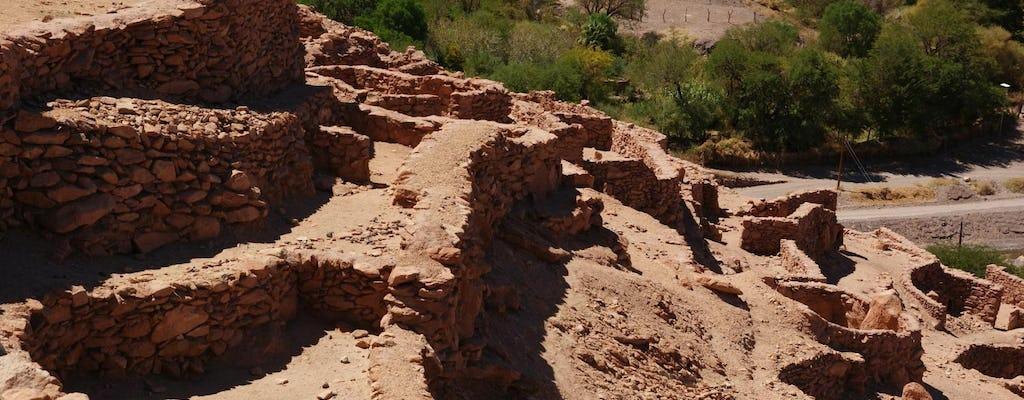 San Pedro de Atacama archaeological and city tour
