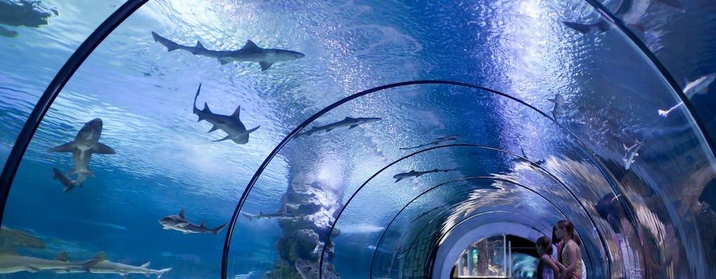 Antalya Aquarium Tickets