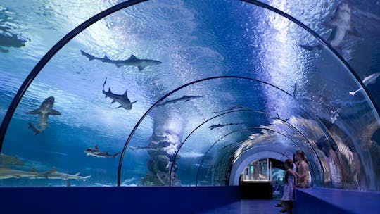 Antalya Aquarium tickets