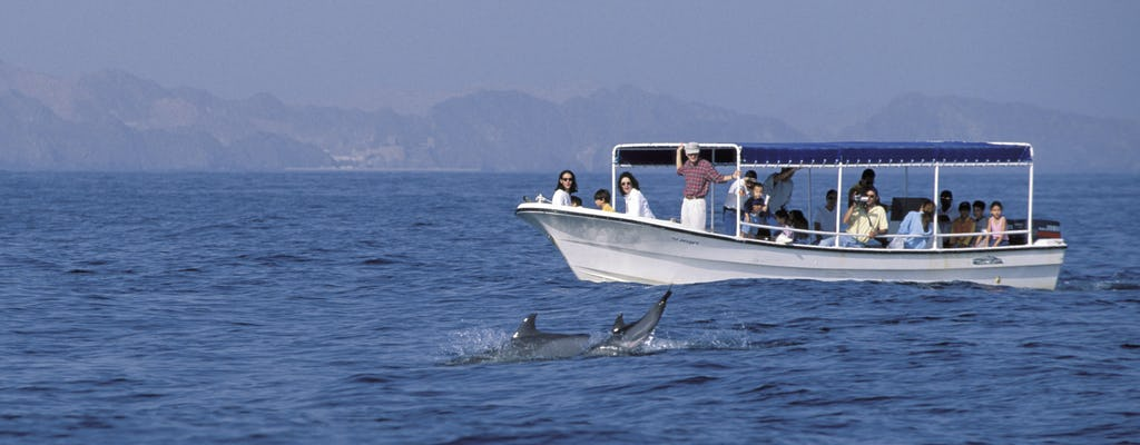 Osservazione e snorkeling dei delfini in Oman