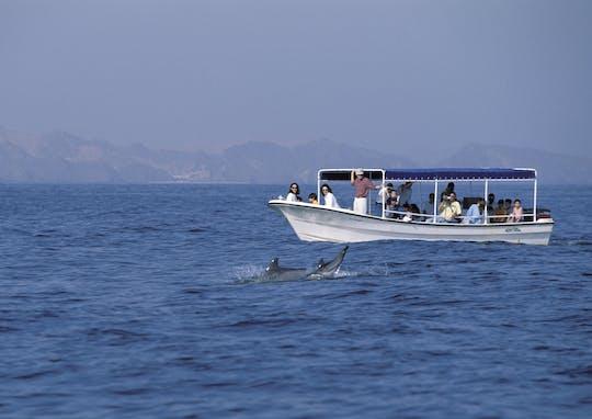 Observación de delfines y esnórquel en Omán