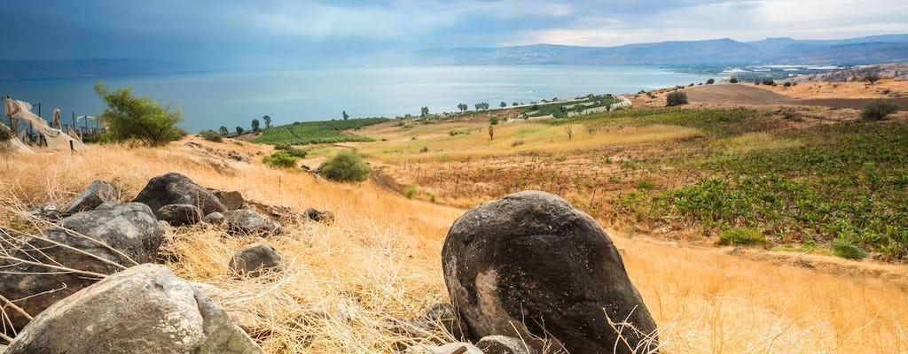 Dagtour door West-Galilea