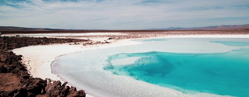 Excursão guiada ao Salar de Atacama e Toconao