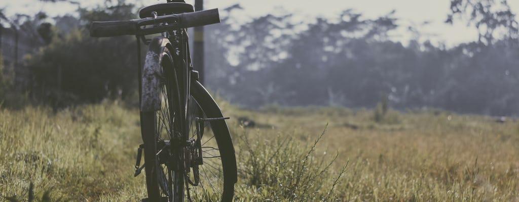 Borobudur and village cycling tour