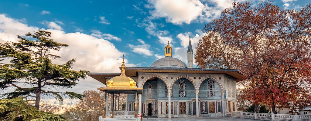 Excursión de medio día por la tarde a las reliquias otomanas de Estambul