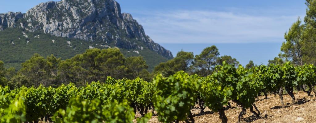 Excursão privada de vinho e azeite Pic Pic Saint-Loup