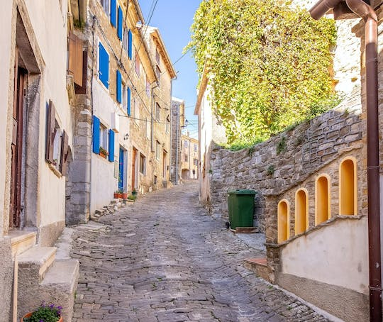 Motovun and Flavors of Istria guided tour from Rovinj
