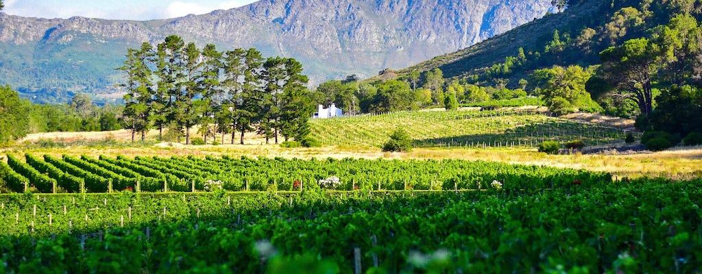 Halve dag Kaapstad Constantia Winelands-tour