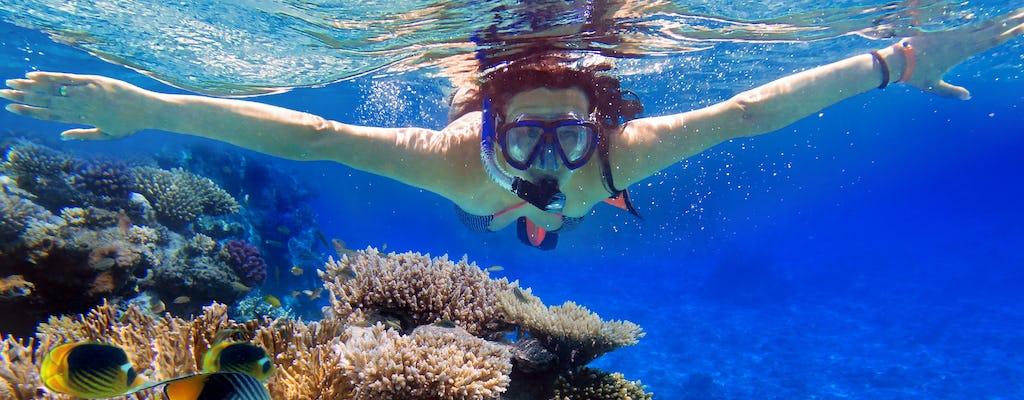 Snorkeling sulla barriera corallina con istruttore