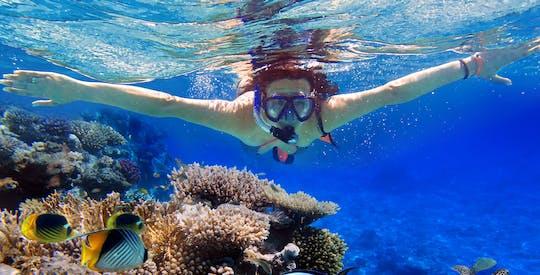 Recifes de corais com snorkel com instrutor