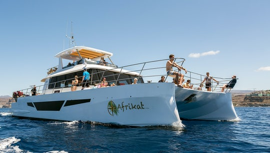 Afrikat Catamaran Morning Cruise