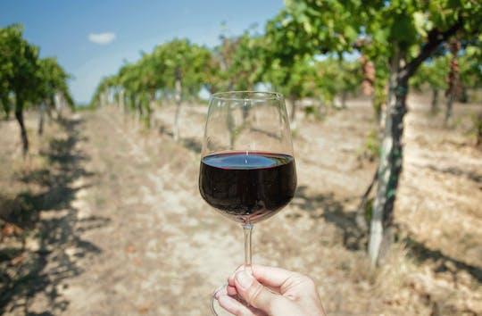 Visite privée de dégustation de vins au départ de Sète