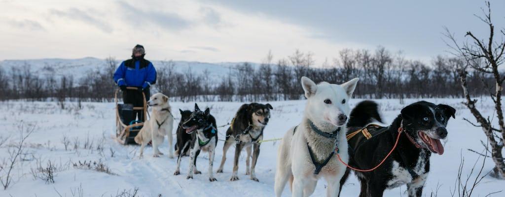 Husky and snow castle dreamland ze spacerem po Zamarzniętym Morzu