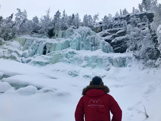Korouoma Canyon frozen waterfalls tour (with snowshoe option)