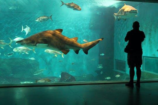 Entradas al acuario de Sevilla