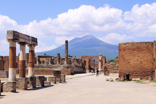 Private tour of Pompei and Sorrento from Rome with lunch