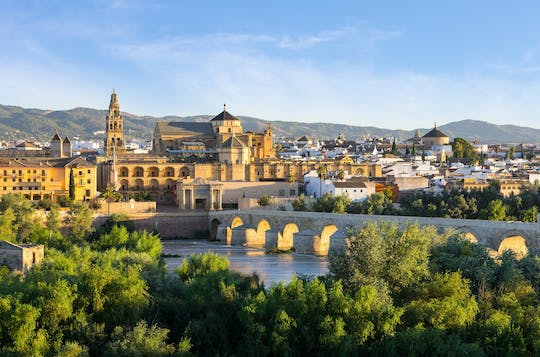 Full-day tour to Cordoba from Seville