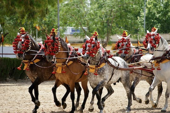 Equestrian show and winery tour in Jerez from Seville