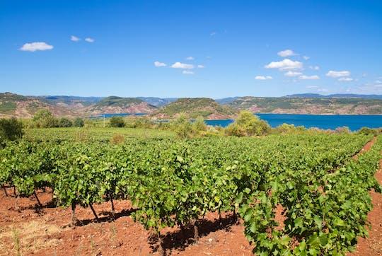 Visite privée de dégustation de vins au départ de Sète avec déjeuner