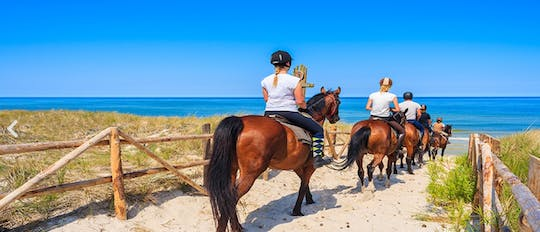 Horse riding at the golden sandy beach of Antalya